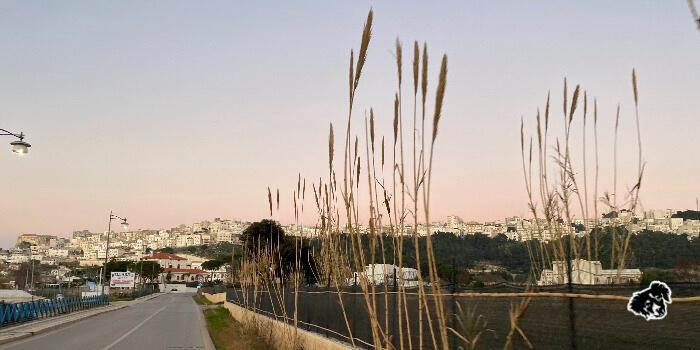 Da Roma a Vieste, un taglio netto all'Italia! • uncanperdue