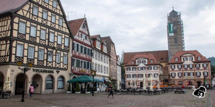 Vigneti della Franconia, Bad Mergentheim Weikersheim • uncanperdue